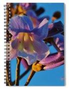 Elegant Lady Spiral Notebook