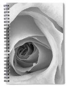 Elegant Rose In Black And White Spiral Notebook