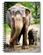 Elephant Baby Olli With Mommy Spiral Notebook