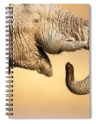 Elephant Drinking Spiral Notebook