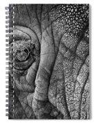Elephant Eye Spiral Notebook