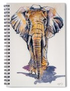 Elephant In Gold Spiral Notebook