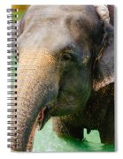 Elephant In Water Spiral Notebook