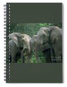 Elephant Ladies Spiral Notebook