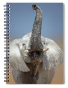Elephant Portrait Spiral Notebook