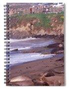 Elephant Seals On The Beach, San Luis Spiral Notebook