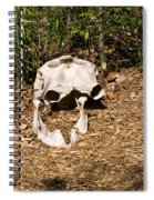 Elephant Skull Spiral Notebook
