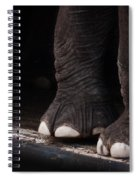 Elephant Toes Spiral Notebook