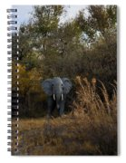 Elephant Trail Spiral Notebook