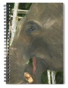 Elephant Under His Thumb Spiral Notebook