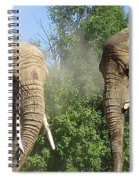 Elephants In The Sand Spiral Notebook