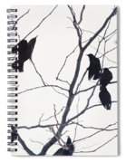 Eleven Birds One Morsel Spiral Notebook
