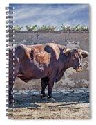 Eli Spiral Notebook