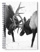 Elk Fighting Black And White Spiral Notebook