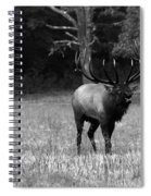 Elk In Black And White Spiral Notebook