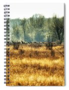 Elk In The Distance No. 2 Spiral Notebook