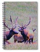 Elk On The Plains 2 Spiral Notebook