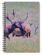 Elk On The Plains 3 Spiral Notebook