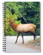 Elk Right Of Way Spiral Notebook