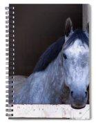 Ellie Spiral Notebook