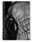 Ellie Up Close Spiral Notebook