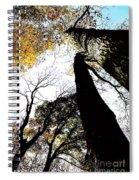 Elora Trees II Spiral Notebook