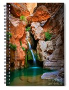 Elves Chasm Spiral Notebook