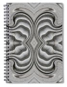 Embellishment In Concrete 3 Spiral Notebook