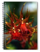 Embraced By An Orchid Spiral Notebook