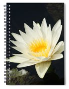 Embracing The Day... Spiral Notebook