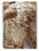 Embracing The Sun Spiral Notebook