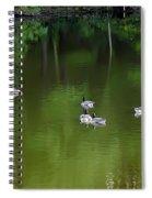 Emerald Beauty Spiral Notebook