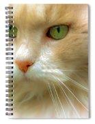 Emerald Eyes Spiral Notebook