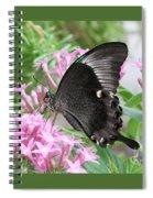 Emerald Peacock Swallowtail Butterfly #5 Spiral Notebook
