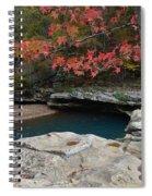 Emerald Pool Spiral Notebook