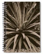 Emerge Spiral Notebook