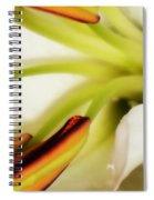 Emerging In Color Spiral Notebook