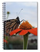 Emerging Monarch Spiral Notebook
