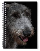 Irish Wolfhound II Spiral Notebook