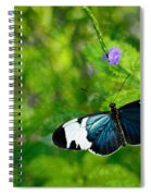 Emmanuale Spiral Notebook