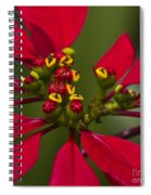 Emmets Home Spiral Notebook