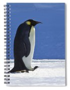 Emperor Penguin And Chick Spiral Notebook