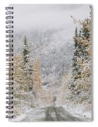 Empty Road Passing Through A Forest Spiral Notebook