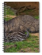 Emu And Chicks Spiral Notebook