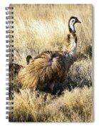 Emu Chicks Spiral Notebook