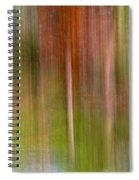 Encantamiento Spiral Notebook