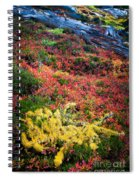 Enchanted Colors Spiral Notebook