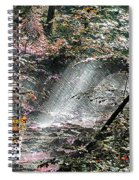 Enchanted Forest - Featured In Wildlife Group Spiral Notebook