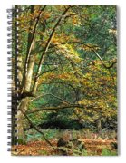 Enchanted Forest Tree Spiral Notebook