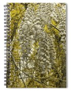 Enchanted Garden Spiral Notebook